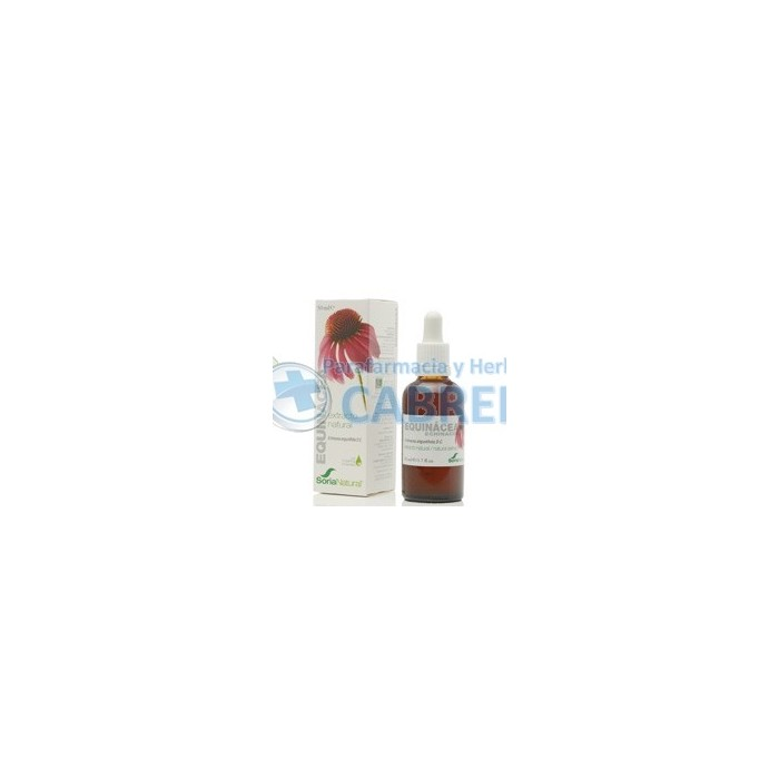 Soria Natural Extracto Equinacea (Echinacea)50 ml