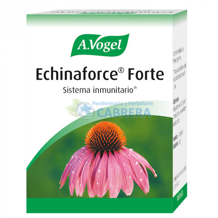 Vogel Echinaforce Forte
